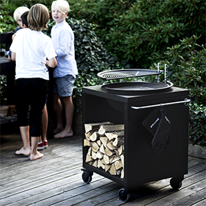 grill_17_frit_300x300